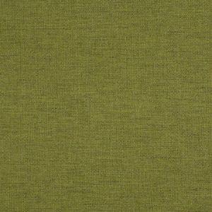 ZUMA Lizard Fabricut Fabric