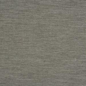 ZUMA Gargoyle Fabricut Fabric