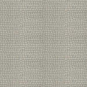 RAPIDO SKIN Marble Fabricut Fabric