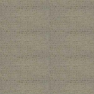 RAPIDO SKIN Dune Fabricut Fabric