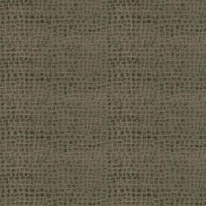RAPIDO SKIN Acorn Fabricut Fabric