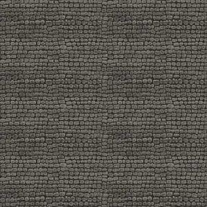 RAPIDO SKIN Charcoal Fabricut Fabric