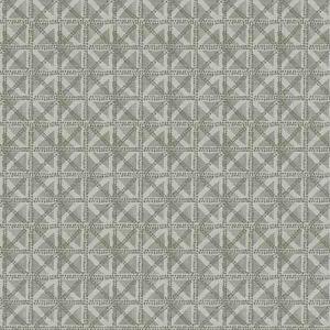 ACHROMATIC Fossil Fabricut Fabric