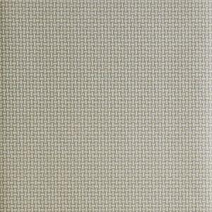 30003W Gray 02 Trend Wallpaper