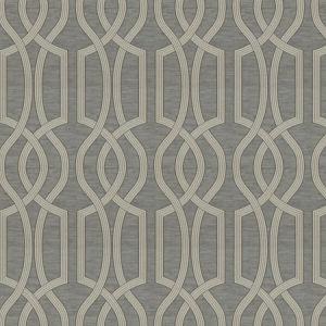 NET WORTH Charcoal Fabricut Fabric
