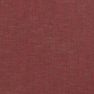 04645 Raspberry Trend Fabric