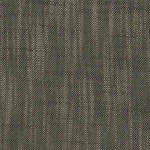 04653 Ebony Trend Fabric