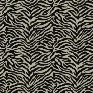 ZEBRA TAILED Domino Fabricut Fabric