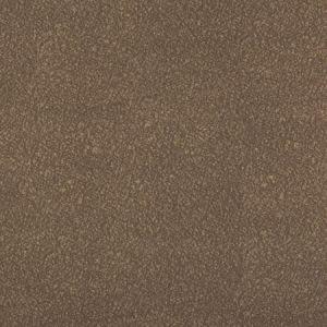 AMES-621 AMES Elephant Kravet Fabric