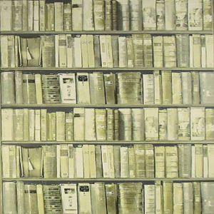 AMW10042-11 LIBRARY Stone Kravet Wallpaper