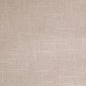 B4008 Raffia Greenhouse Fabric