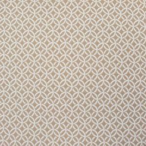 B8820 Linen Greenhouse Fabric