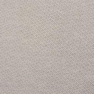B8863 Cashmere Greenhouse Fabric