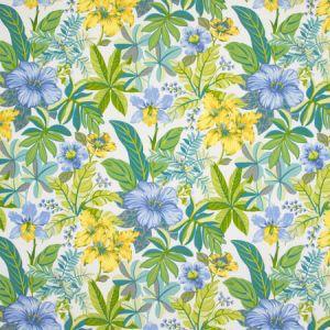 B8910 Spring Water Greenhouse Fabric