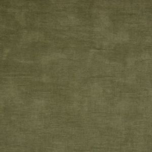 B9888 Olive Greenhouse Fabric