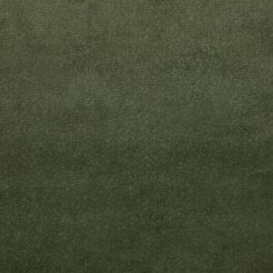 BF10827-794 ALMA VELVET Forest GP & J Baker Fabric