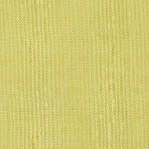 CH 06234176 ALSARA Canary Scalamandre Fabric