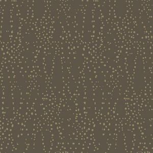 CI2351 Star Struck York Wallpaper