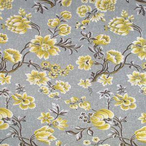 CL 0004 36430 VICTORIA Corniola Scalamandre Fabric