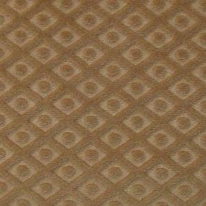 CL 0004 36434 ARGO TRELLIS Castoro Scalamandre Fabric