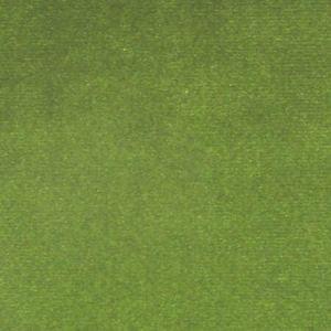 CL 0023 36432 ARGO Foglia Scalamandre Fabric