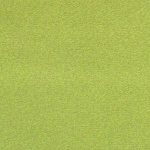 CL 0024 36432 ARGO Muschio Scalamandre Fabric