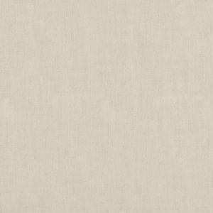 ED85317-104 STIPPLE Ivory Threads Fabric