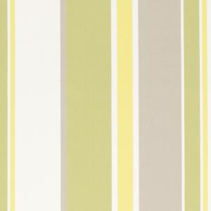 F0498/02 HARTFORD Citrus Clarke & Clarke Fabric
