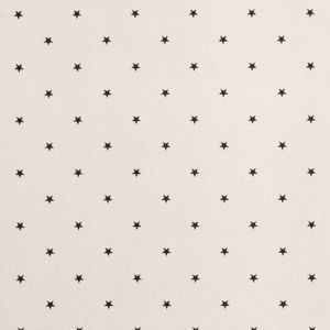F0519/02 ETOILE Jet Clarke & Clarke Fabric