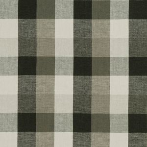 F1042/01 AUSTIN CHECK Charcoal Clarke & Clarke Fabric