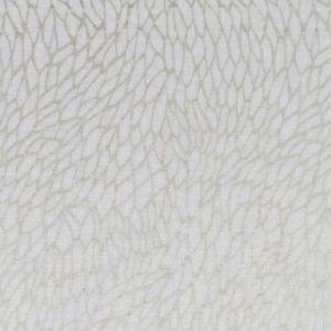 F1278/02 CORALLINO SHEER Champagne Gold Clarke & Clarke Fabric