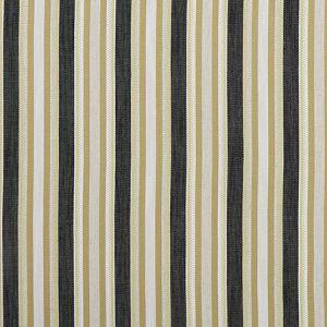 F1352/02 ZIBA Charcoal Ochre Clarke & Clarke Fabric