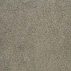 F3197 Ash Greenhouse Fabric