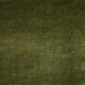2633 Grass Trend Fabric