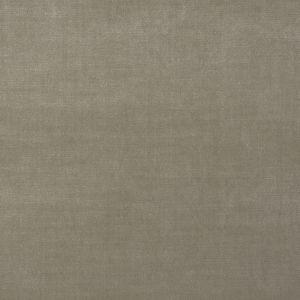 2633 Chinchilla Trend Fabric
