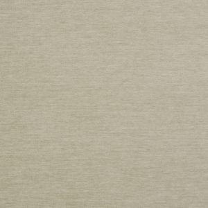 INTRIGUE Raffia Fabricut Fabric