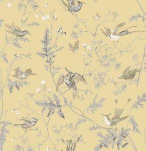 F111/1001-CS HUMMINGBIRDS Yellow Grey Cole & Son Fabric