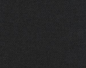 A9 00556850 SLOW Black Scalamandre Fabric