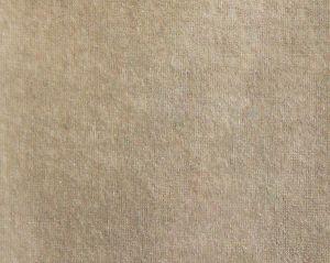 B8 0001DANT DANTE Hazelnut Scalamandre Fabric