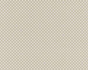 BK 0001K65121 BELLAIRE TRELLIS Flax Scalamandre Fabric