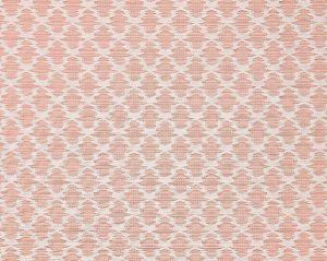 27035-002 SAMARINDA IKAT Blush Scalamandre Fabric
