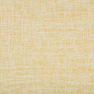 35045-4 DEJO Limonata Kravet Fabric