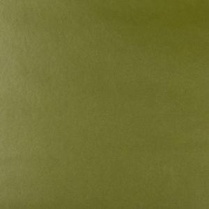 FRANKEL-3 Kravet Fabric