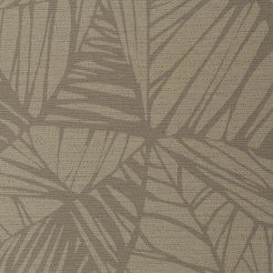 WHF3268 PHOENIX Birch Winfield Thybony Wallpaper