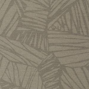 WHF3269 PHOENIX Wolf Winfield Thybony Wallpaper