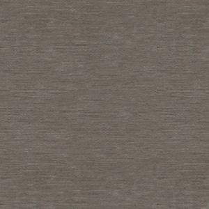 31991-11 BISOUS Gentle Grey Kravet Fabric