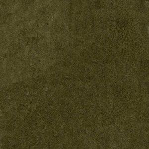 AM100111-106 PELHAM Taupe Kravet Fabric