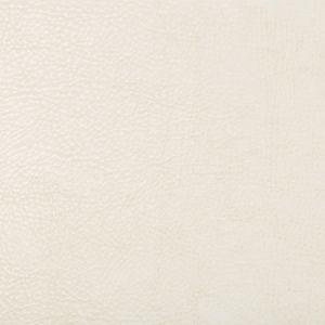 BEHOLDER-1 Kravet Fabric