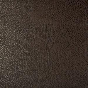 BEHOLDER-6 Kravet Fabric