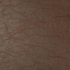 BUCKPASSER-6 Kravet Fabric